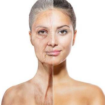 Phytoceramides For Wrinkle Reduction: A Review